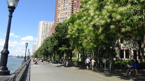 New York Hudson River Aug 15 (5)