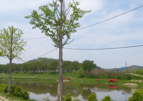 Co-Andong-Hahoe-Village (3)