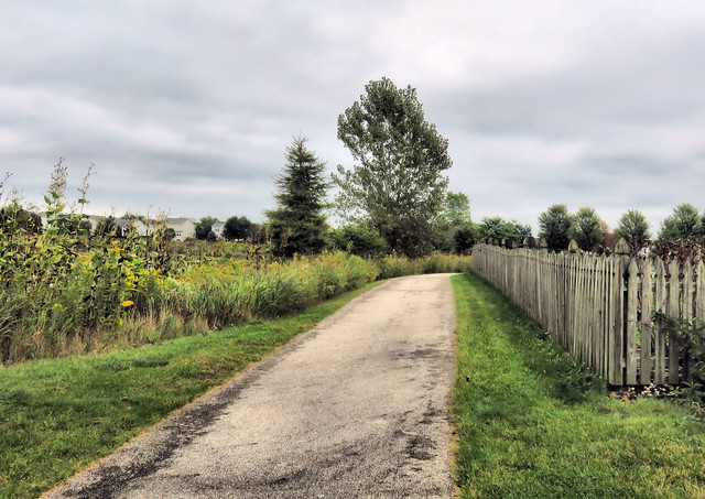 Jones Meadow fence HDR 20150918