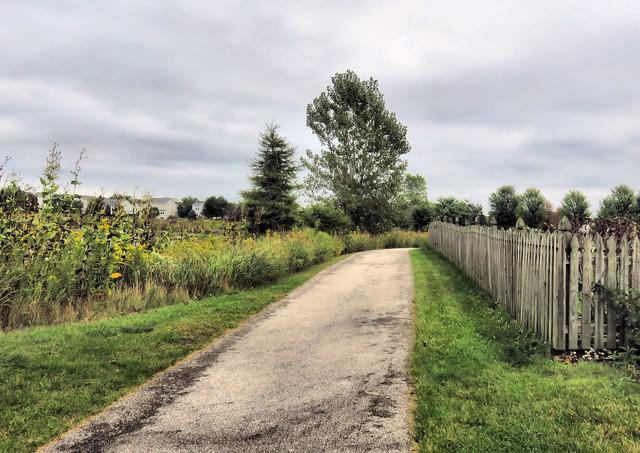 Jones Meadow fence HDR 20150918