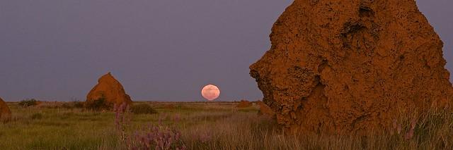 Moonrise in Onslow
