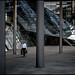 between the pillars by henny vogelaar