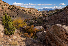 Lower Bangs Canyon (11-11-15)