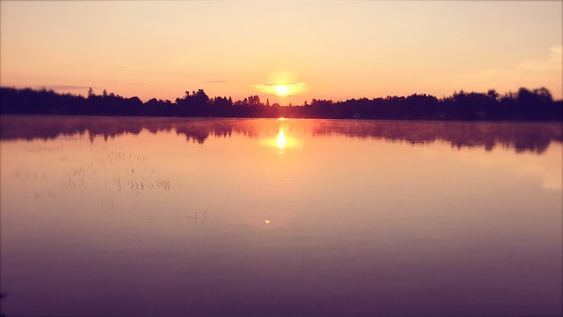 225/365. sunrise in the sunrise county.