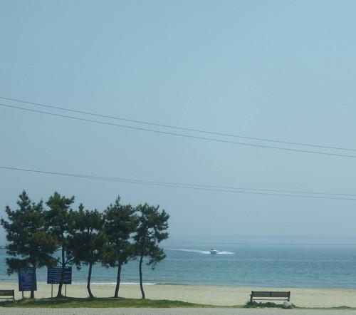 Co-Gangneung-Sokcho-Bus (5)