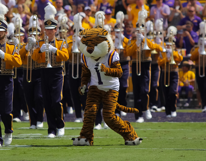 Texas Temptation - Mainieri courted by Longhorns, but staying at LSU