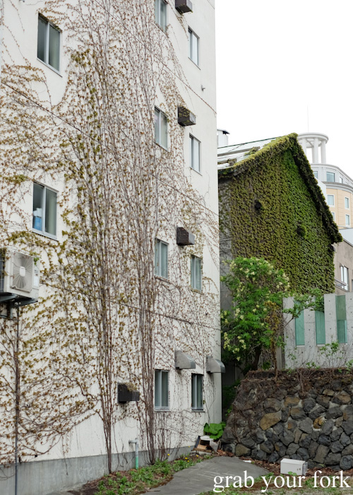 Creepers and moss on buildings in Otaru, Hokkaido