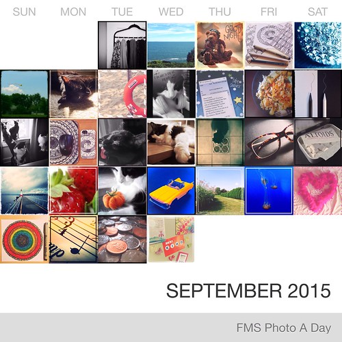 FMS Photo A Day - September 2015
