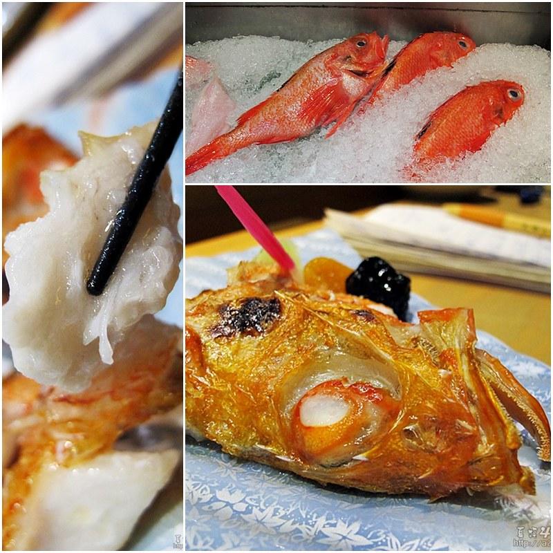 16喜多知魚