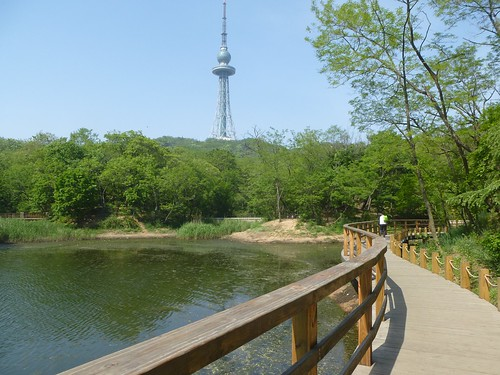 CH-Qingdao-Parc Zhongshan (9)