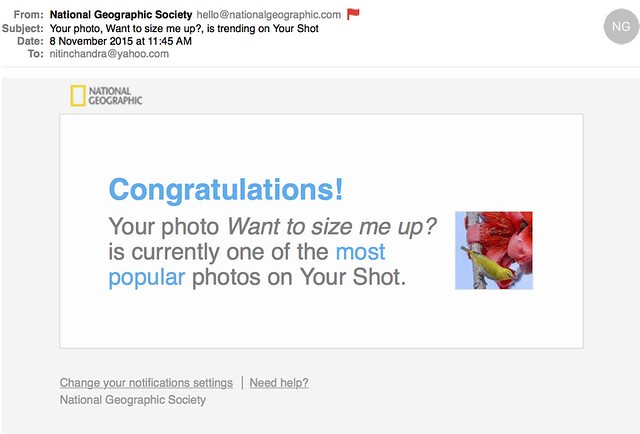 Your photo Want to size me up is trending on Your Shot
