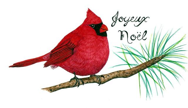 Joyeux Noel Cardinal
