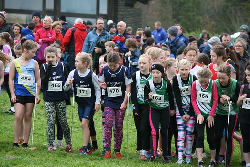 Leinster XC Kennedy Park Nov 2015