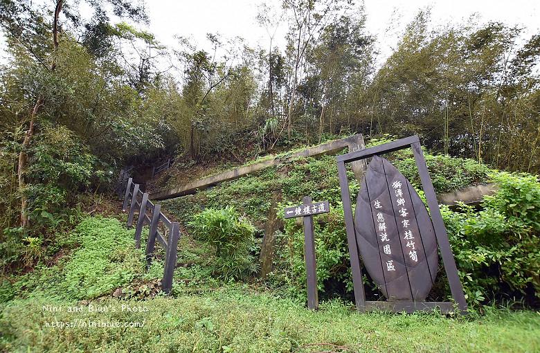 苗栗獅潭旅遊景點11