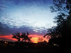 Great to be back home with this #glorious #sunrise! #theindieartist :sunglasses: