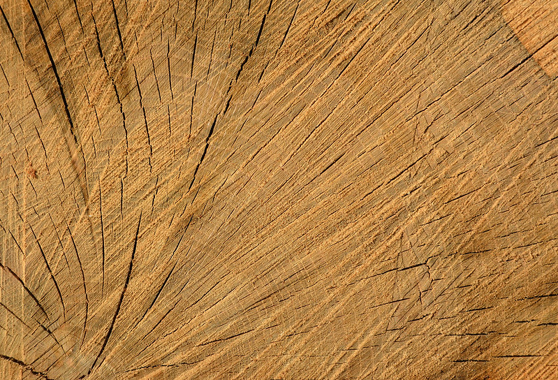 Wood Texture #7