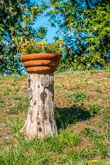 Plant Pot at Écluse Double du Marie No. 9.10