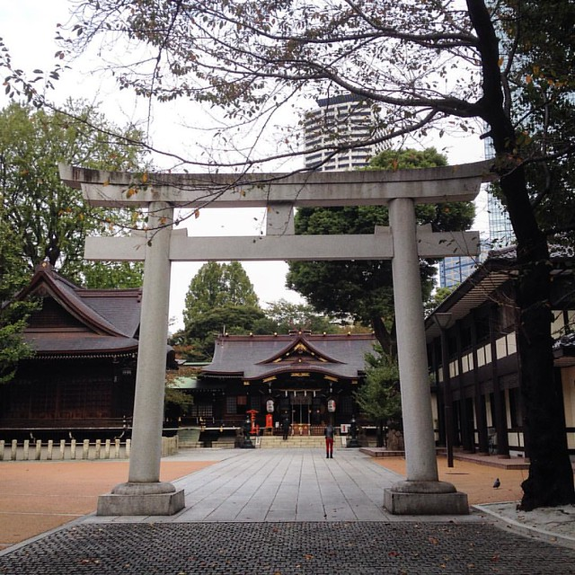 Kumano Shrine in Shinjuku #Environment #Shrine #Shinjuku #Tokyo #travel #ig_japan