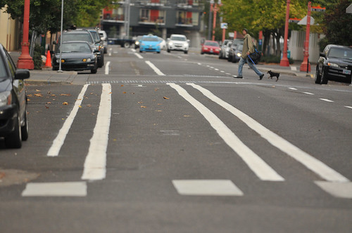 New bike lane on 3rd Ave-18.jpg