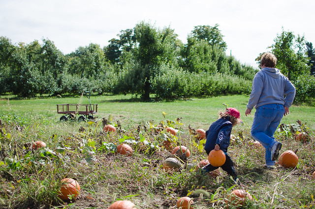20151004-Pumpkin-Patch-1232