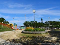 第2回大石公園ひまわり祭り2015-46