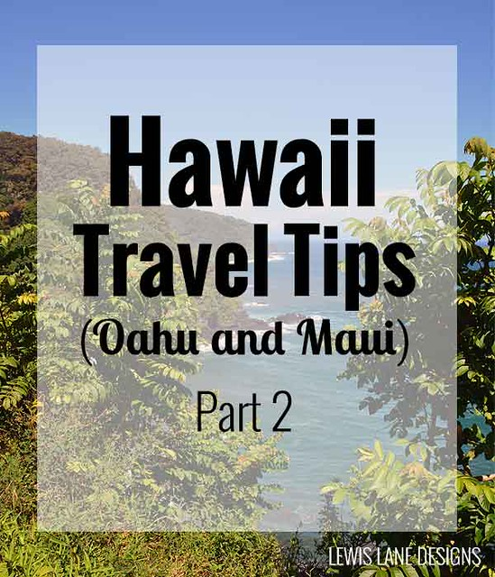 Hawaii Travel Tips by Lewis Lane