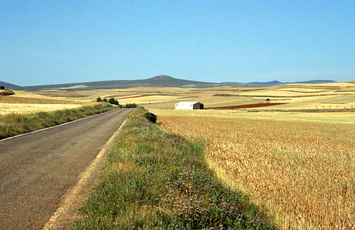 Field near Campillo de Aragón