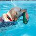 160827GOGO游泳139.jpg