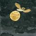 03-08-12-owlmoon-300 by Rob Dunlavey