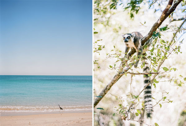 RYALE_Madagascar_Blog1_025