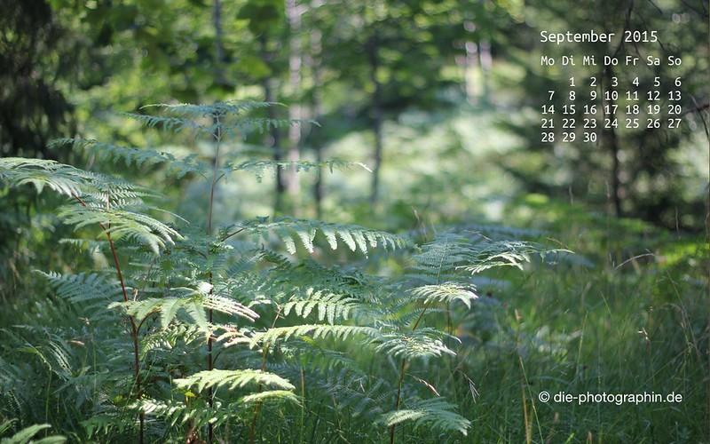 farne_september_kalender_die-photographin