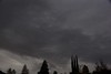 Sky is turning dark with clouds. Is this a sign of rain (finally) to come?