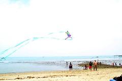 toy(0.0), beach(1.0), sports(1.0), sea(1.0), windsports(1.0), wind(1.0), kite(1.0),