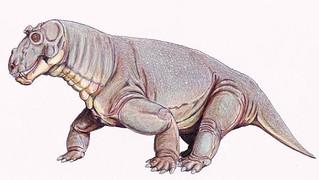 old-dinosaur011