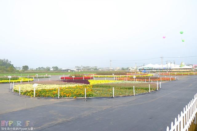2015台中新社花海04