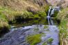 Kiska Spring Stream