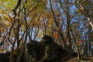 岩の上が蔦岩山