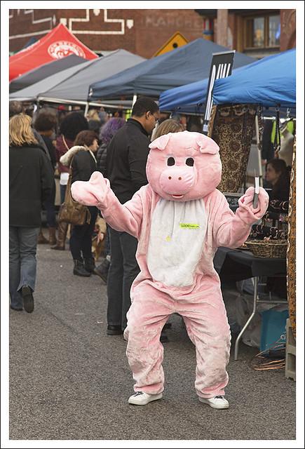 Pig Says Hi 1