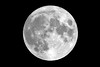 Christmas Full Moon by Kevin's Stuff