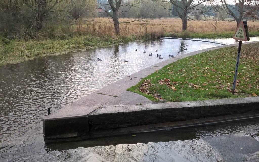 Birdies By the bridge, Eysnford village, Kent