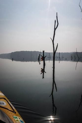 iva kayaking moffitsville paddling southcarolina unitedstates us