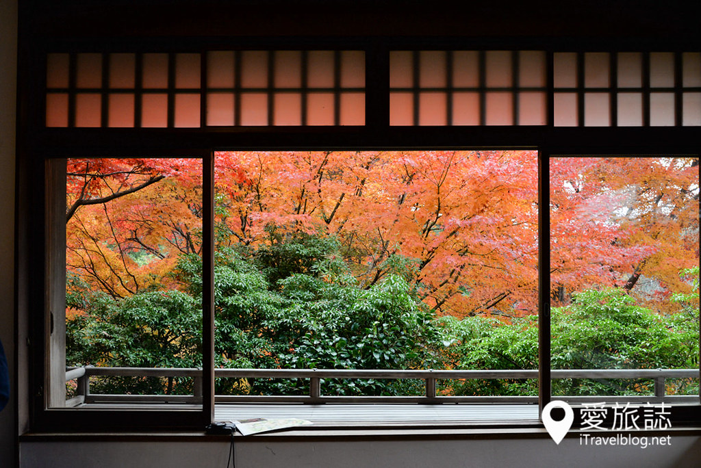 京都赏枫景点 琉璃光院 42