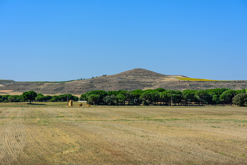 Zona arqueológica de Pintia