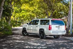 Cadillac Escalade on CW-6 Gloss Black