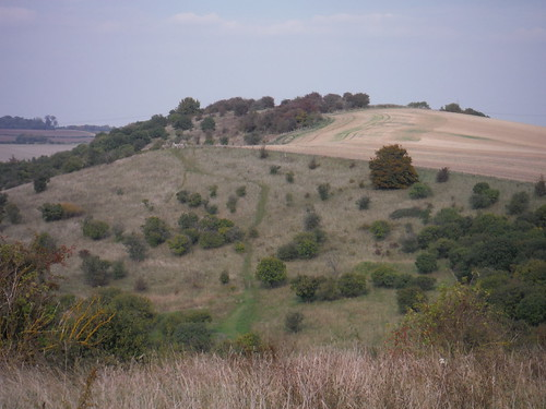 Galley Hill, from Warden Hill (II)