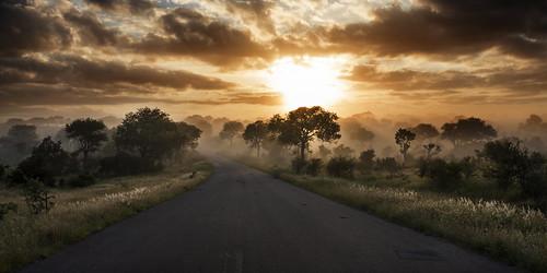 mist sunrise southafrica krugernationalpark mpumalanga krugerpark kruger mistysunrise phabeni phabenigate krugersunrise