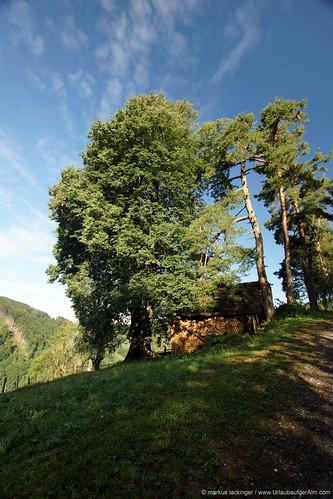 Bei der Kreinzhuabn in Kärnten