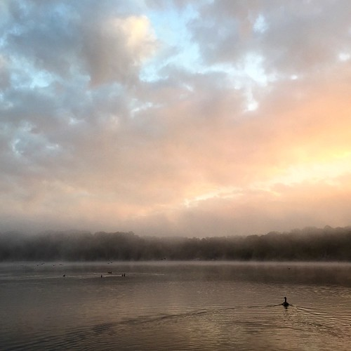 lake nature water sunrise