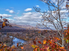 South Fork of The Shenandoah River, Shenandoah River State Park, Warren County, VA