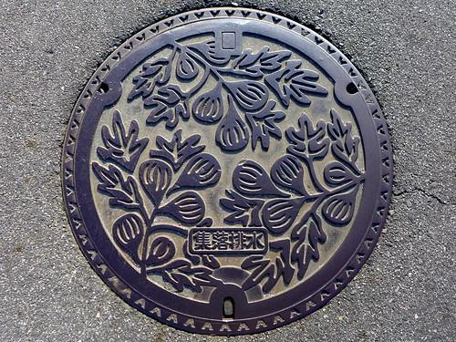 Anjo Aichi, manhole cover 6 (愛知県安城市のマンホール6)